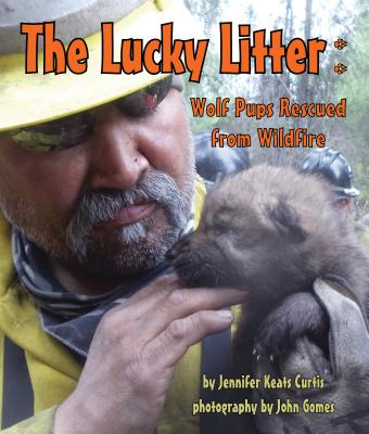 The Lucky Litter: Wolf Pups Rescued from Wildfire